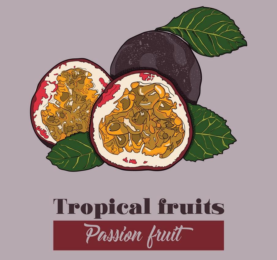 tropical fruits passion fruit
