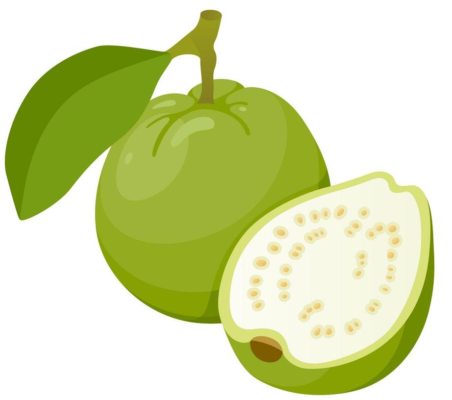 tropical guava
