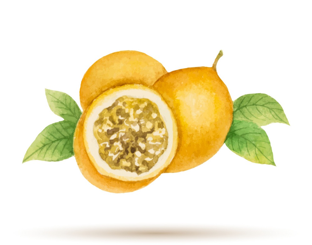 watercolor yellow passion fruit