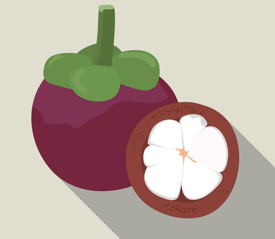 whole and half mangosteen 4