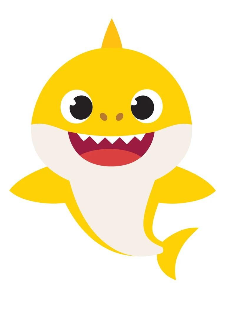 adorable baby shark
