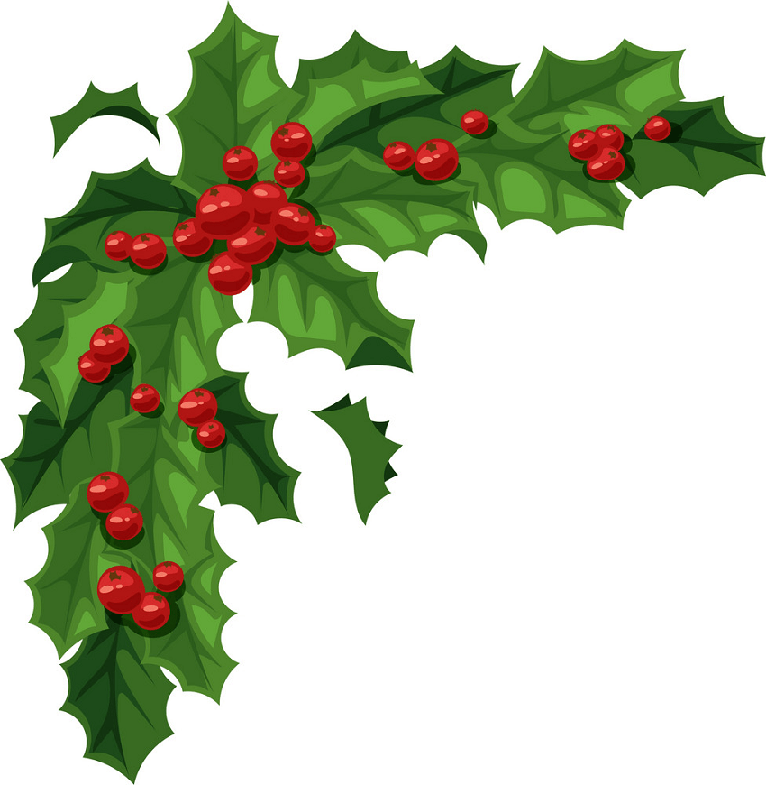 christmas holly berries png
