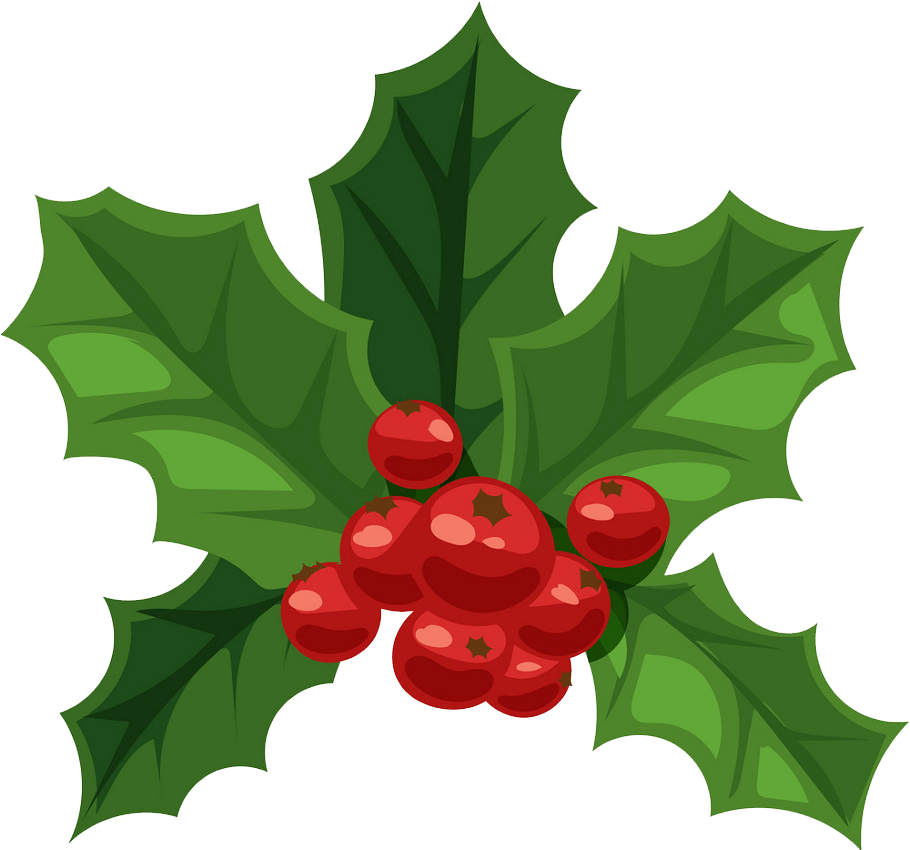 christmas holly png transparent