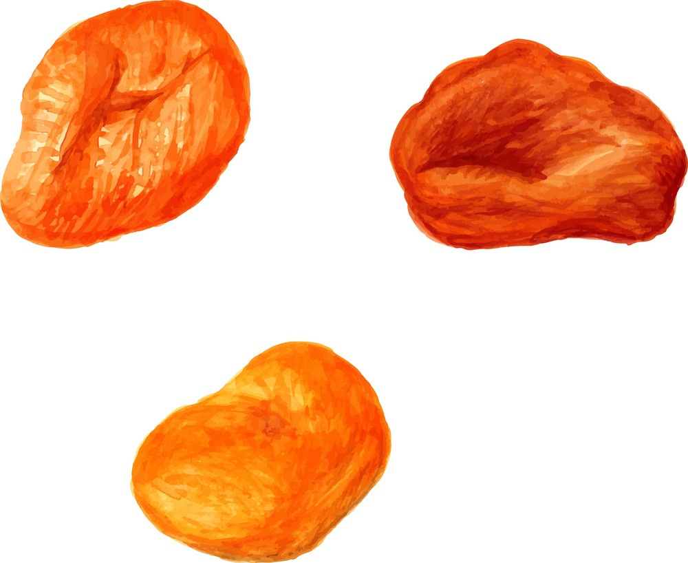 dried apricots fruit
