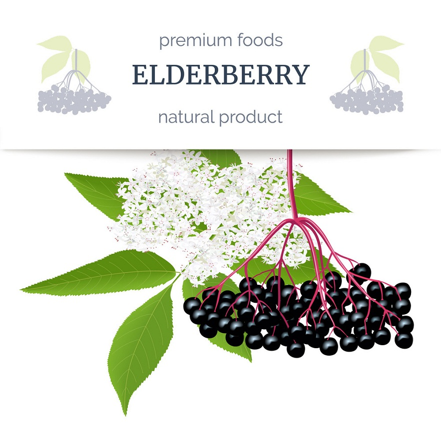 elderberry stripe label