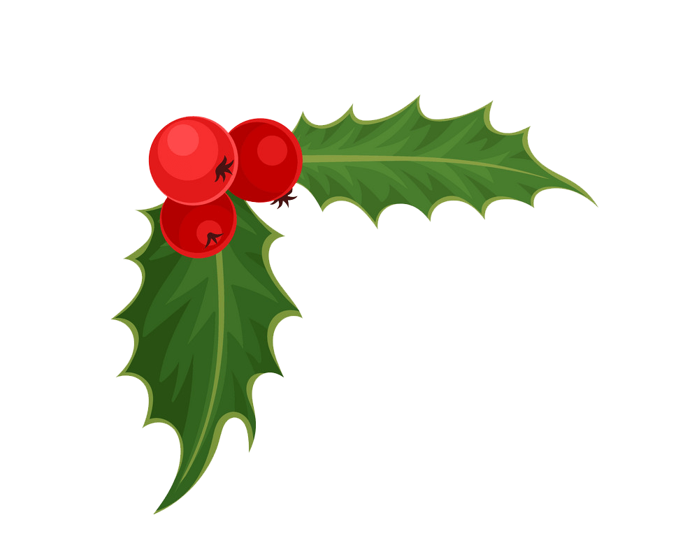 holly 1 png transparent