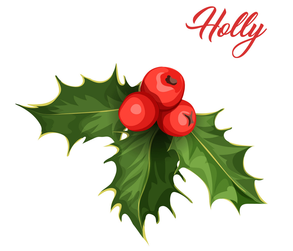 holly 1 png