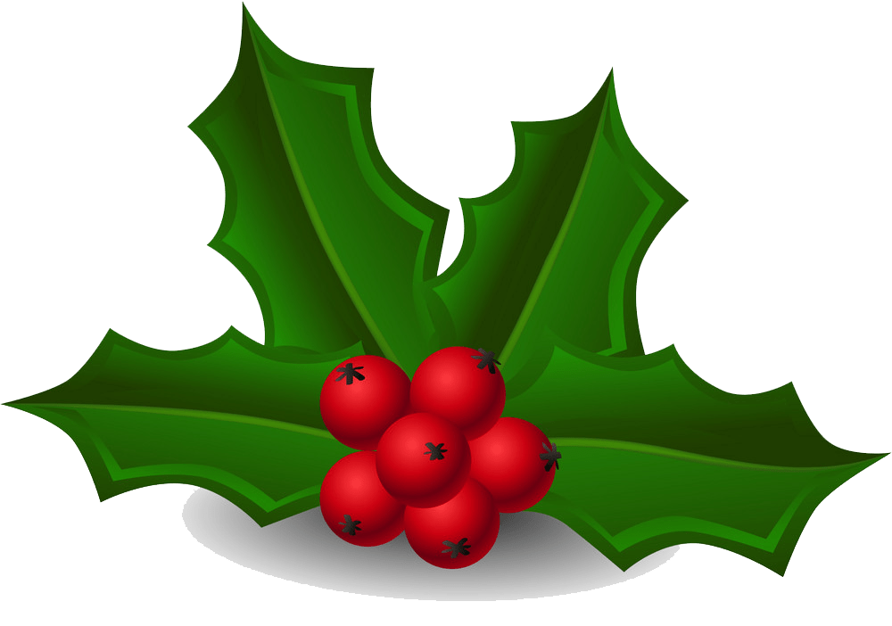 holly 2 png transparent
