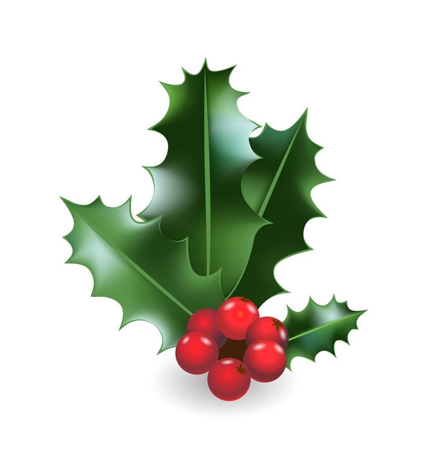 holly festive decor