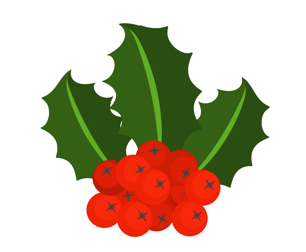 holly with berries png transparent