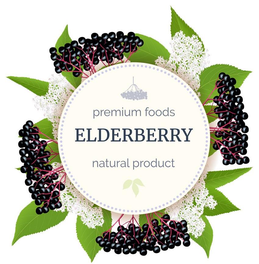 natural elderberry poster