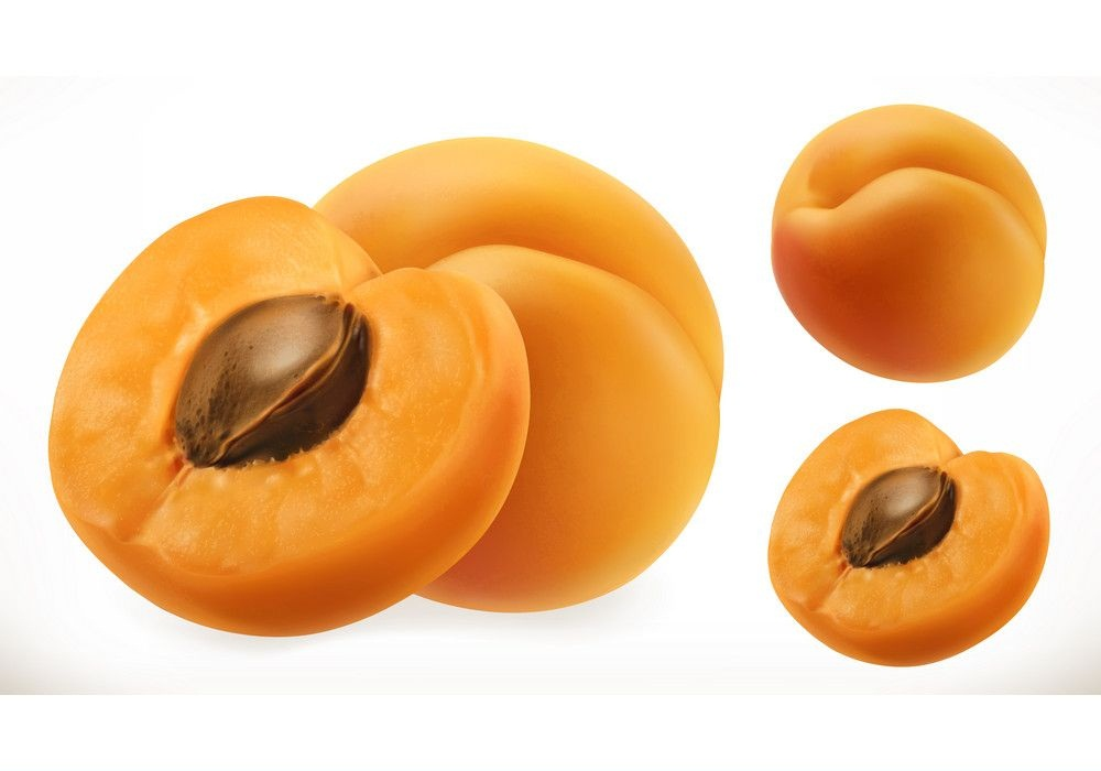 realistic fresh apricots