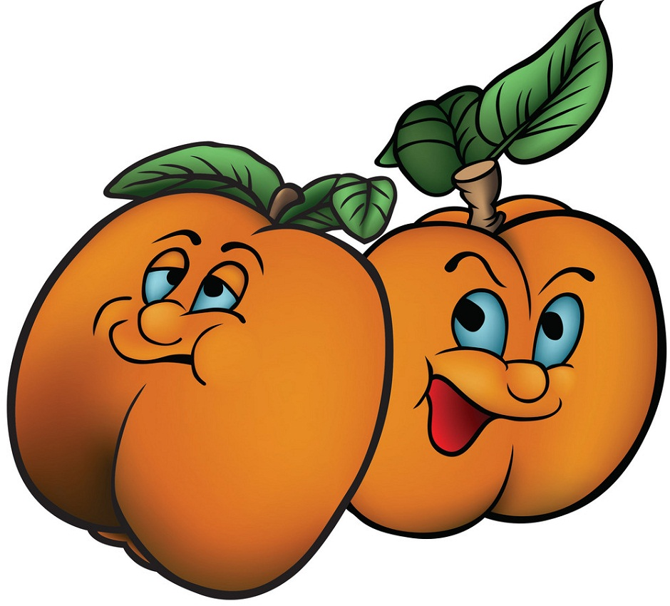 two cartoon apricots