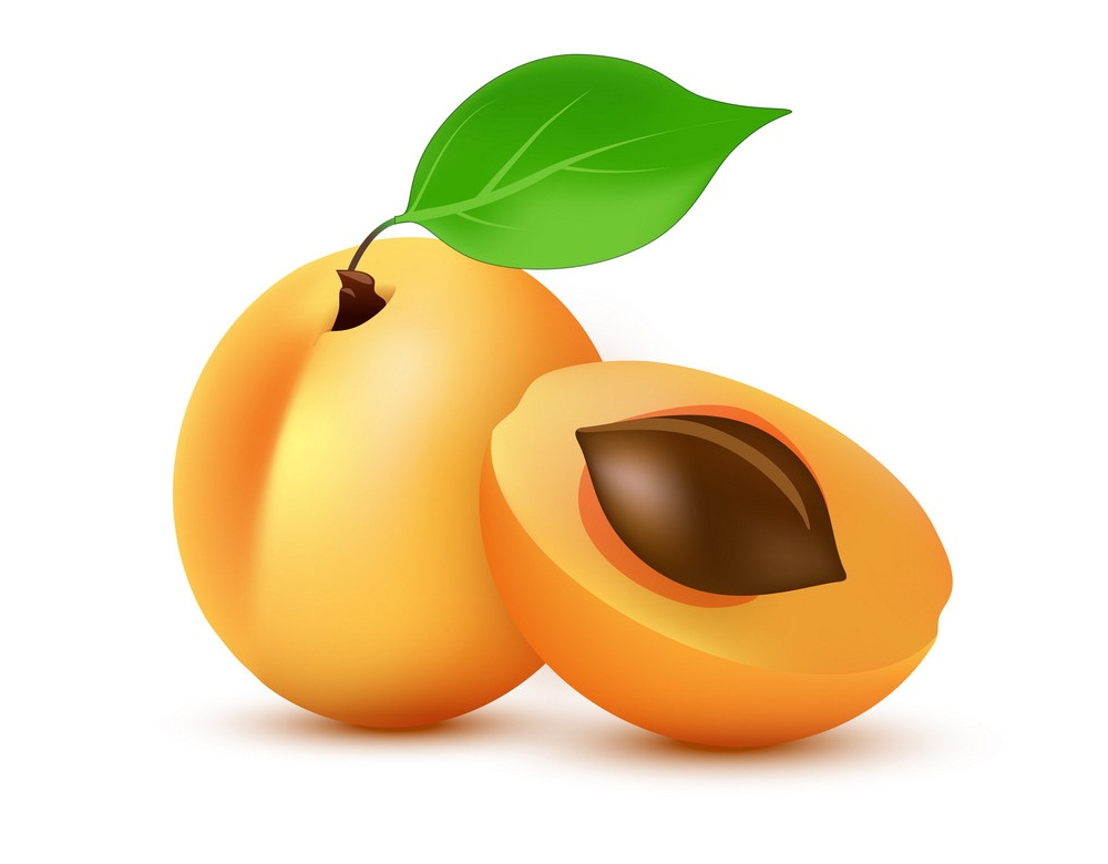 whole and half apricot fruit