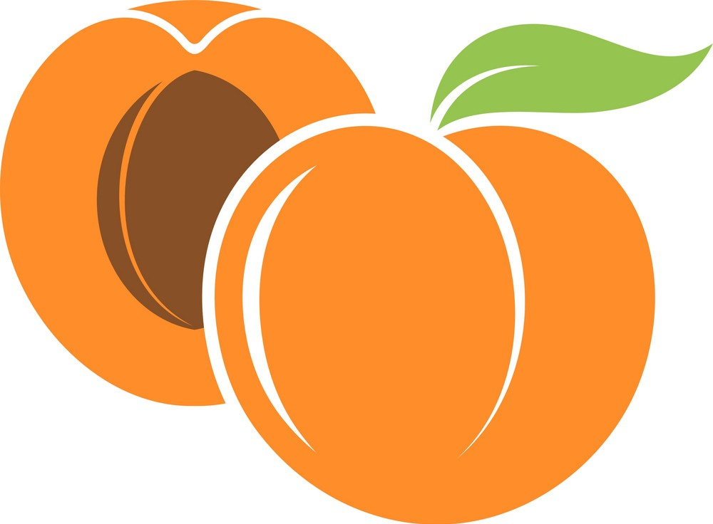 whole and half apricot icon