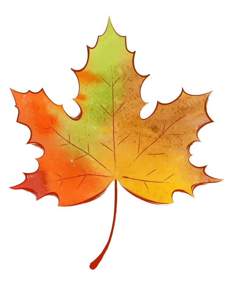 Autumn Leaf clipart transparent