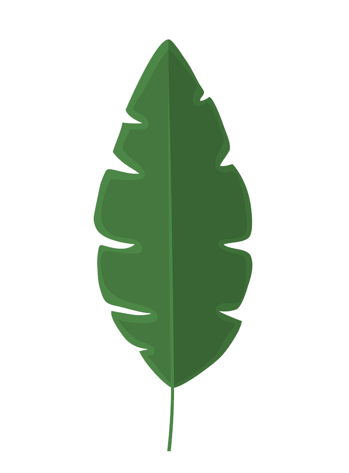 Banana leaf clipart transparent