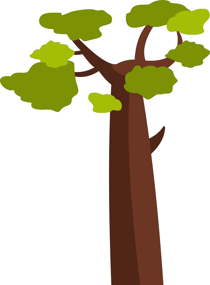 Baobab tree clipart transparent 2
