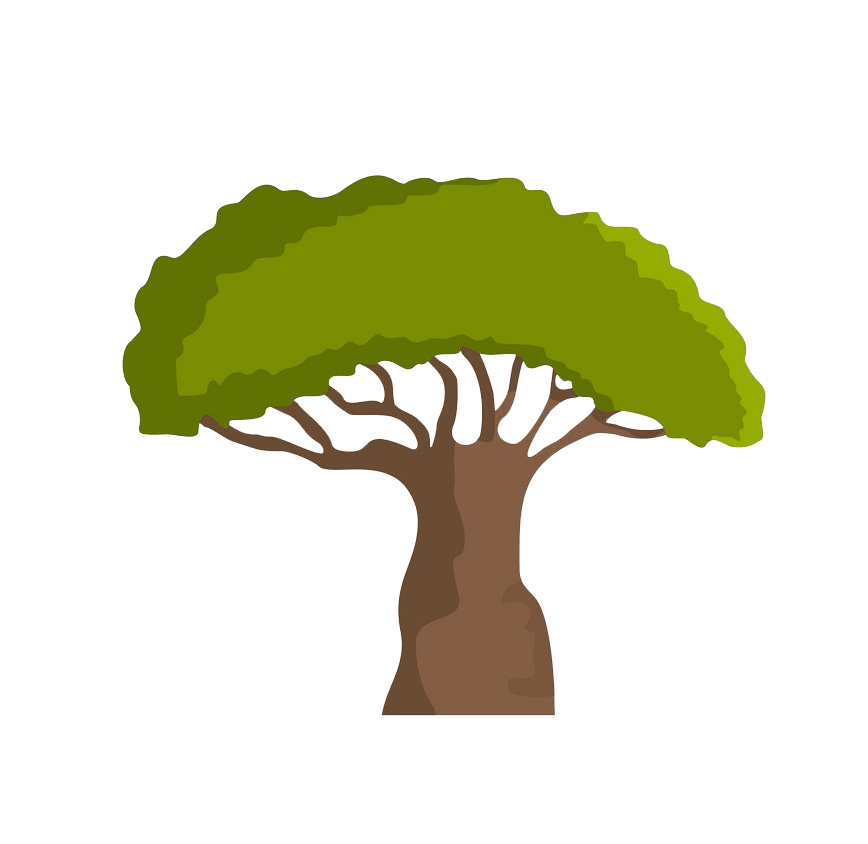 Baobab tree clipart transparent 3