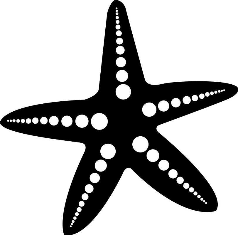 Black and white starfish clipart 2