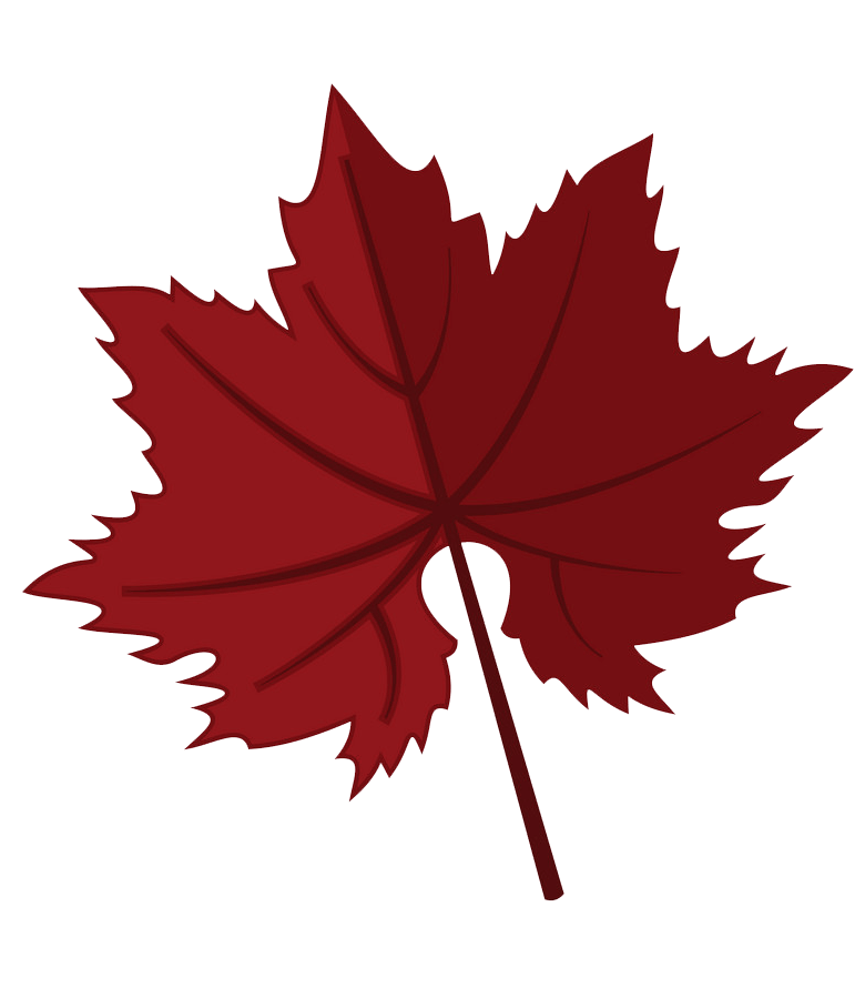 Dark red maple leaf clipart transparent