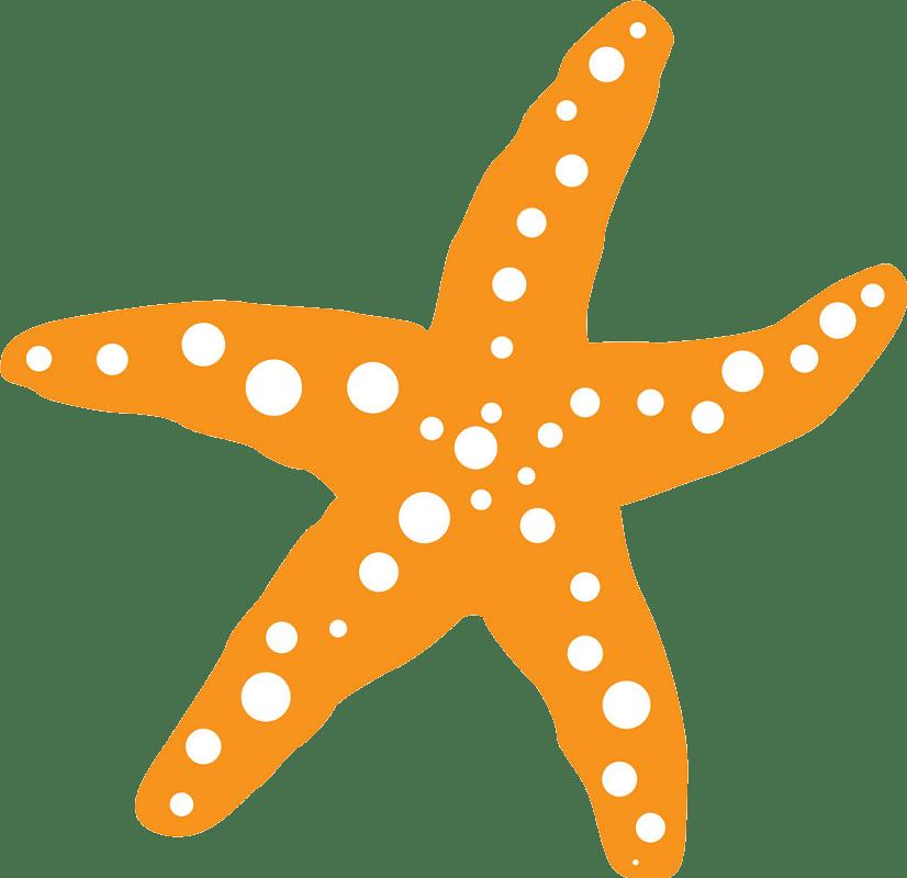 Orange starfish clipart transparent