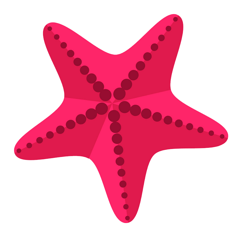 Pink starfish clipart transparent