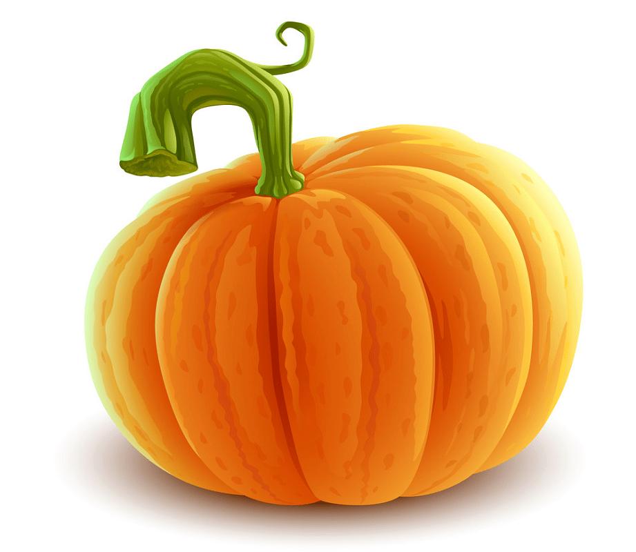 Pumpkin clipart 2