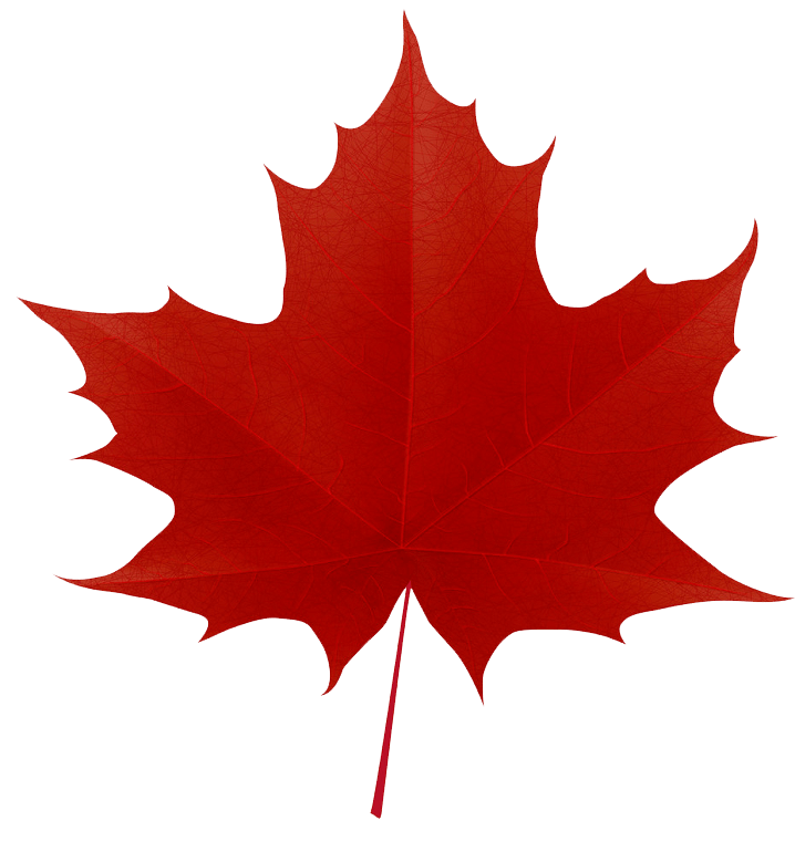 Red maple leaf clipart transparent