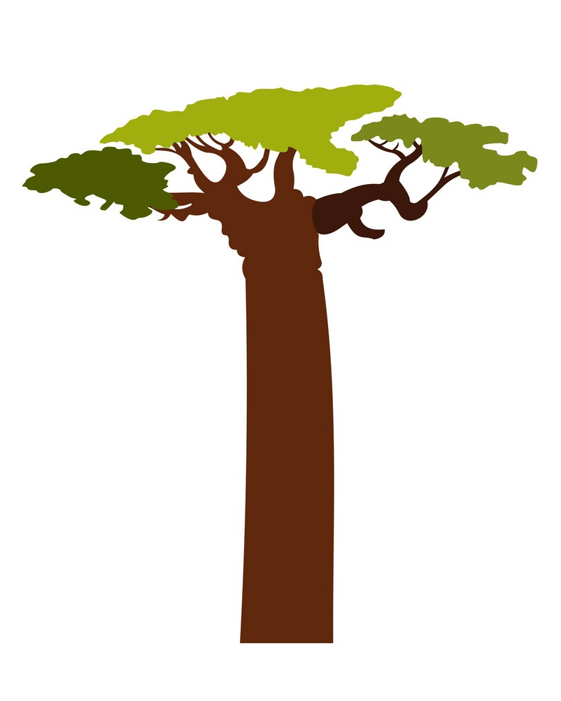 baobab tree clipart