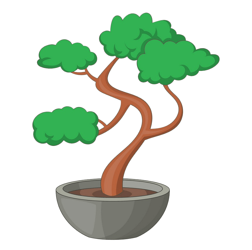 bonsai tree clipart transparent 1