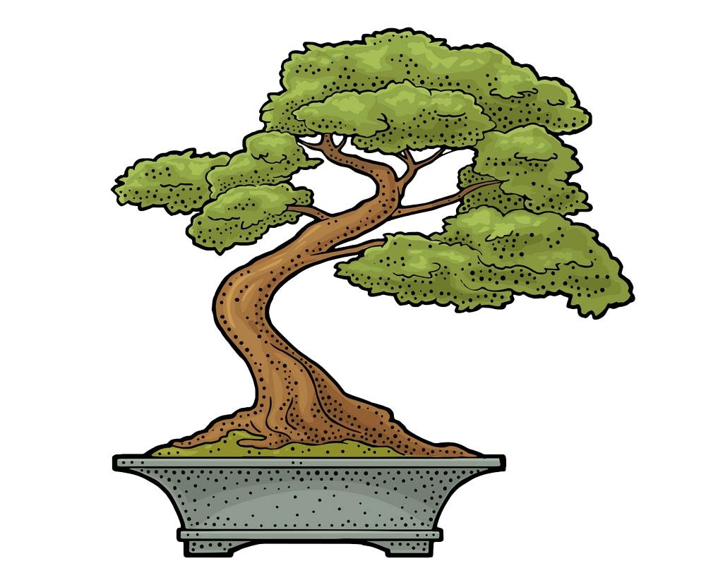 bonsai tree clipart transparent 3