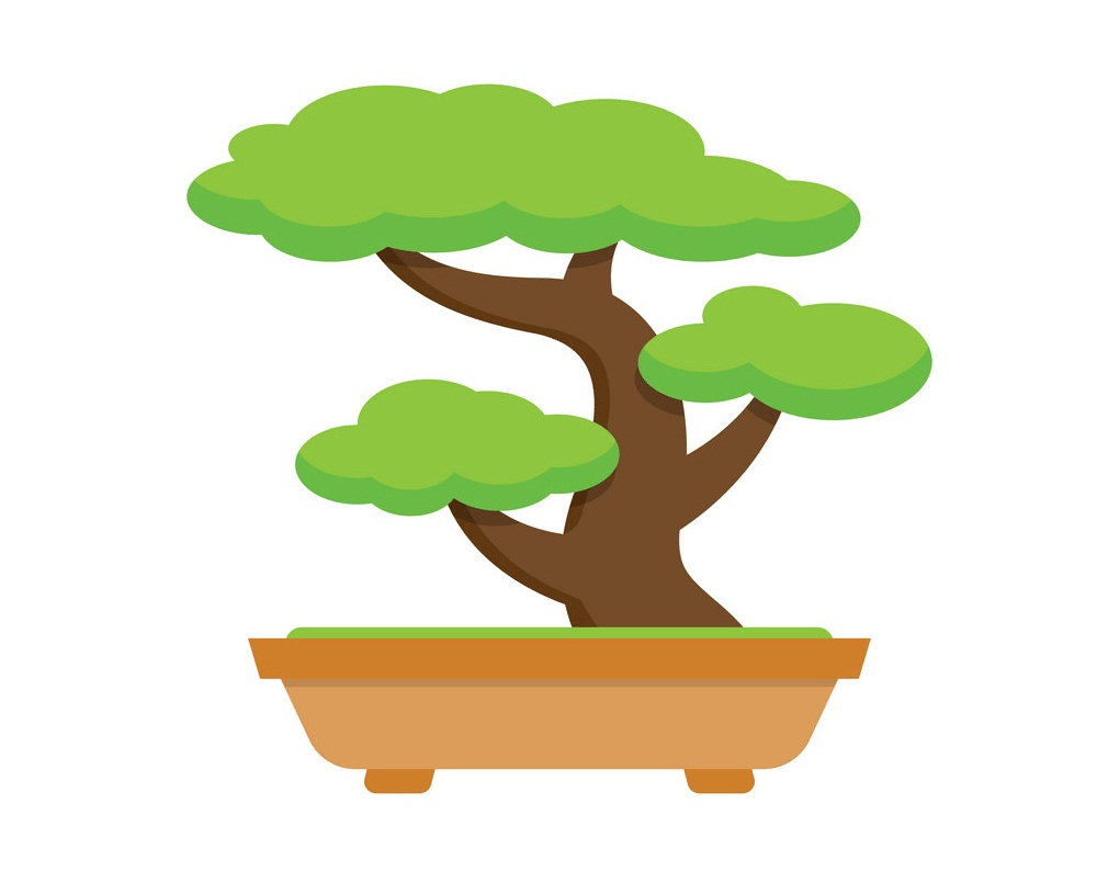 bonsai tree clipart