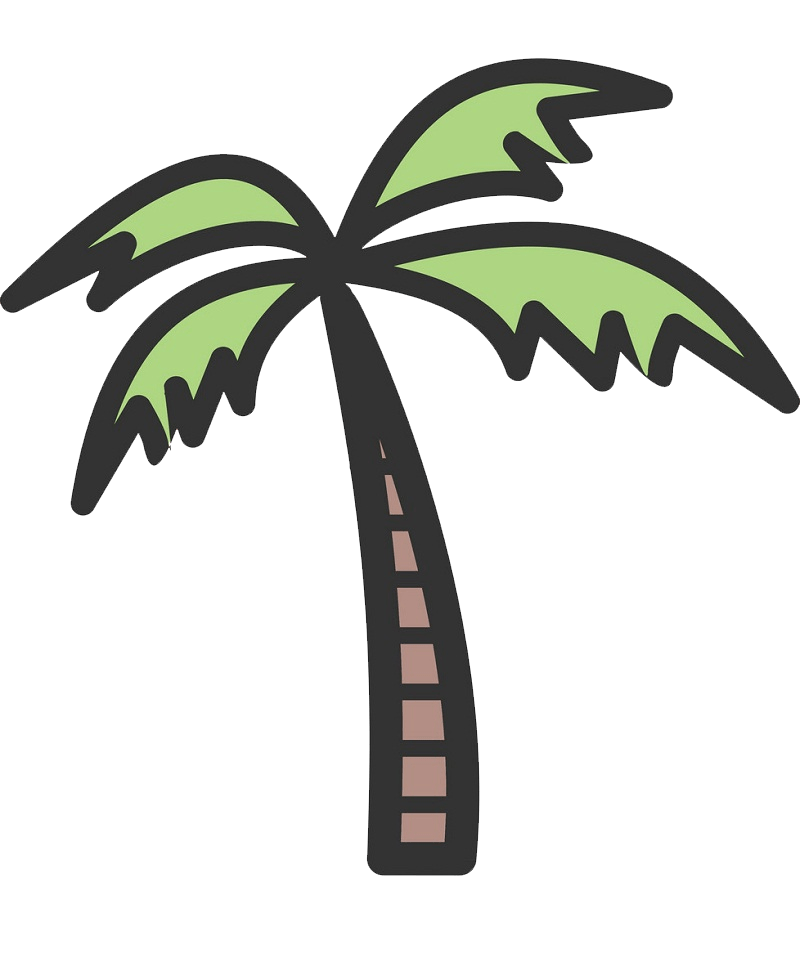 coconut palm tree clipart transparent