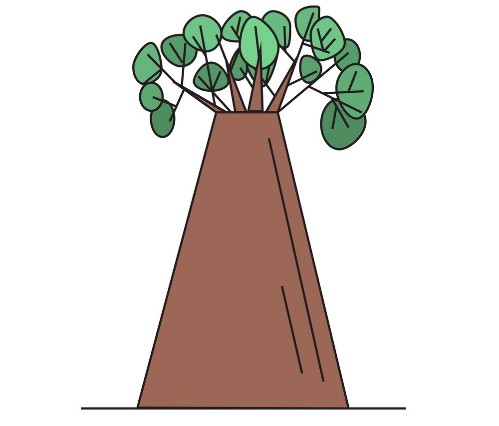 hand drawn baobab tree png