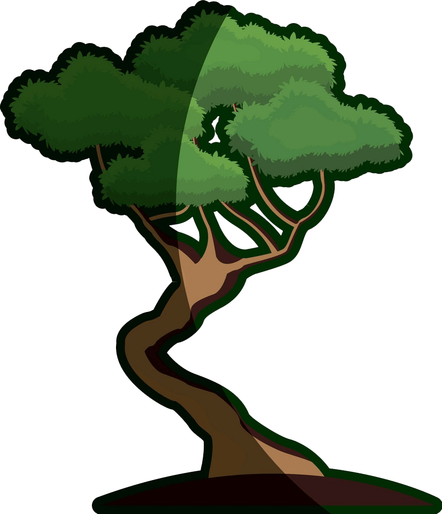 japanese bonsai tree clipart transparent