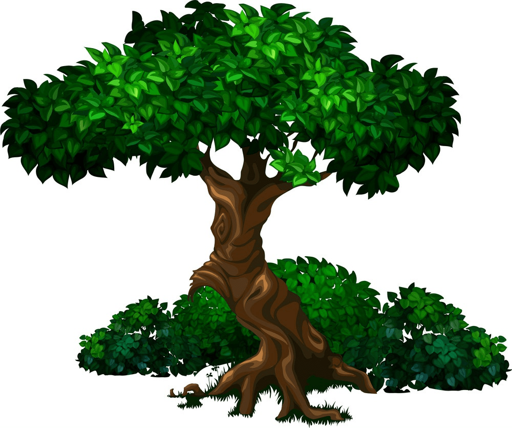 old oak tree png