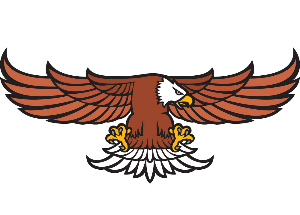 A Flying Eagle clipart transparent