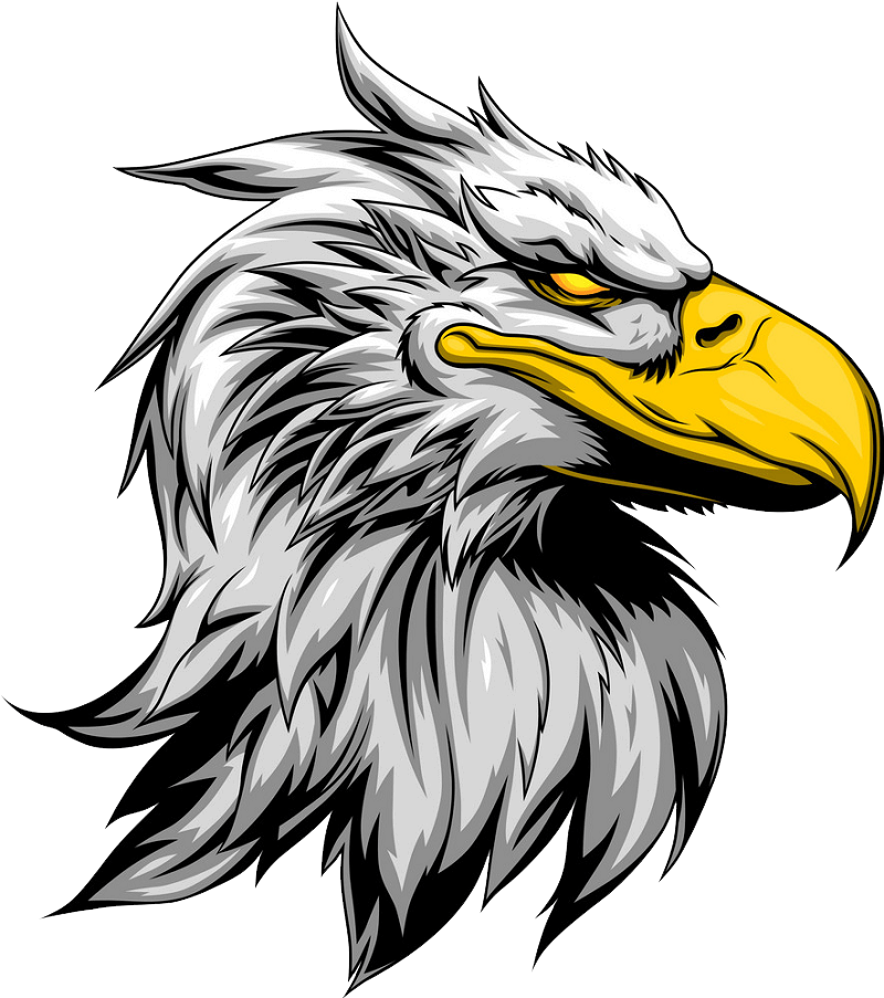 Angry Eagle clipart transparent