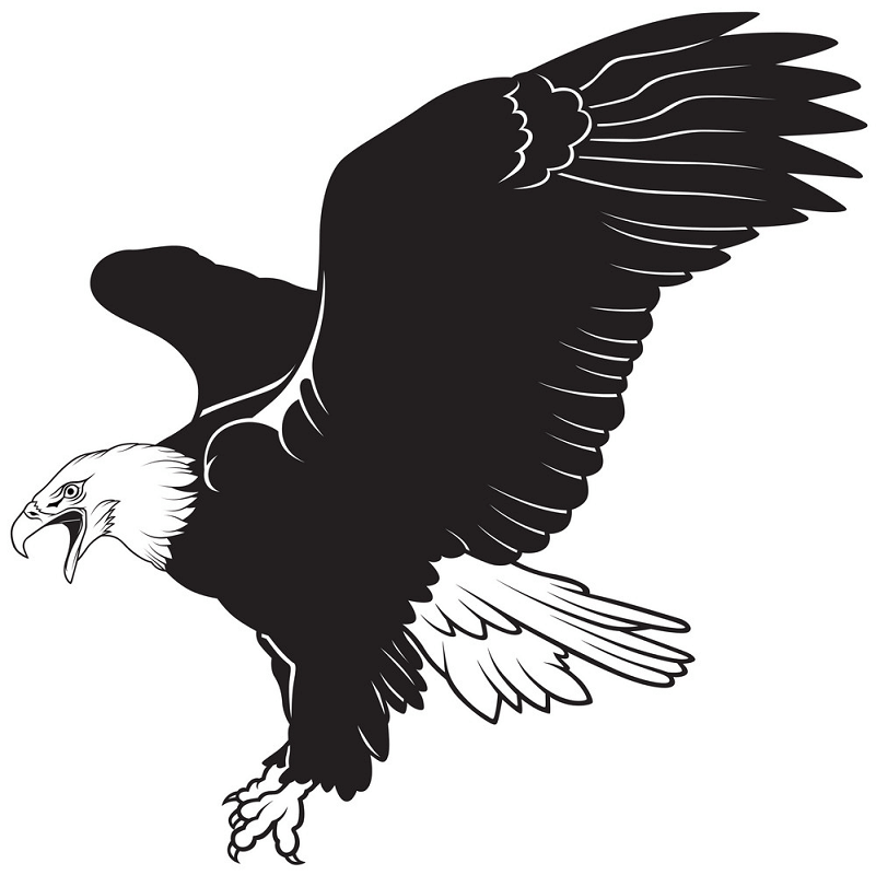 Black and White Eagle clipart 1