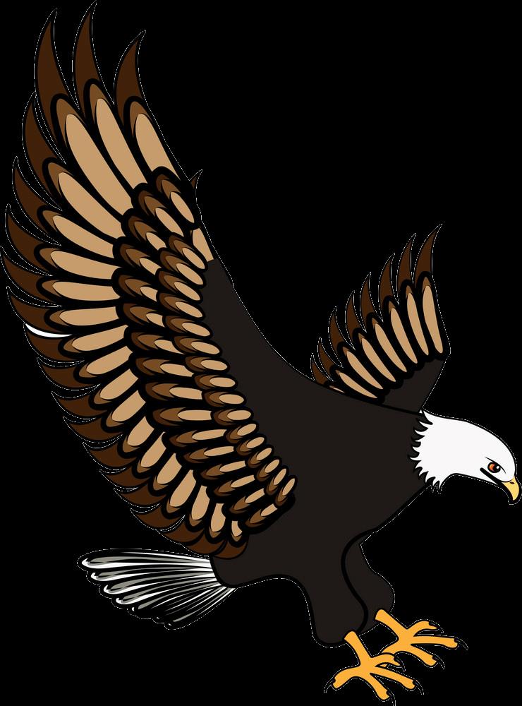 Cool Eagle clipart transparent