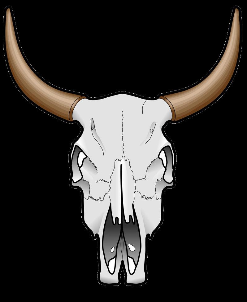 Cow Skull clipart transparent