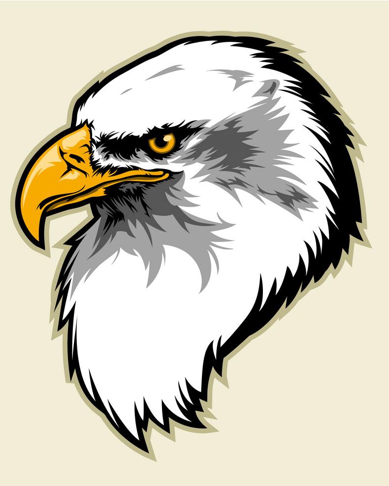 Eagle Head png