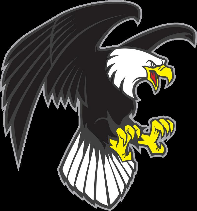 Flying Eagle clipart transparent 1