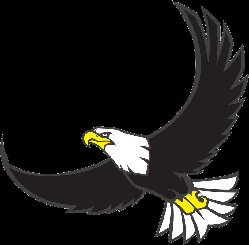Flying Eagle clipart transparent 2