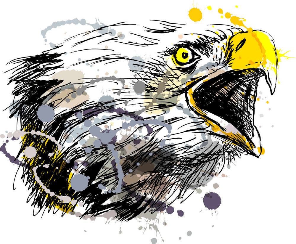 Hand Sketch Eagle clipart