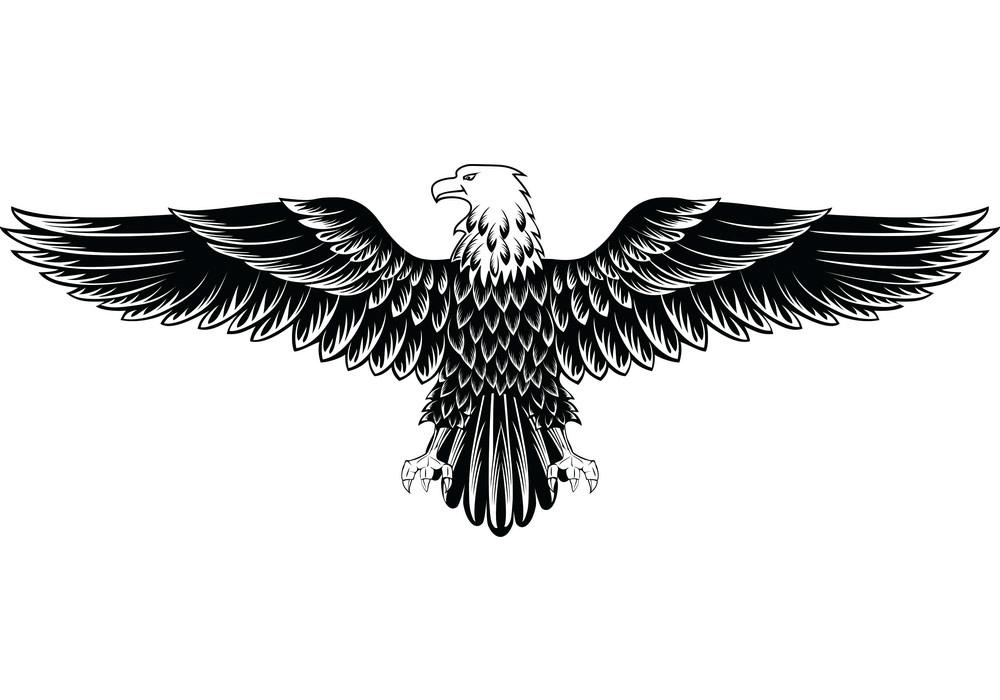 Logg Eagle clipart