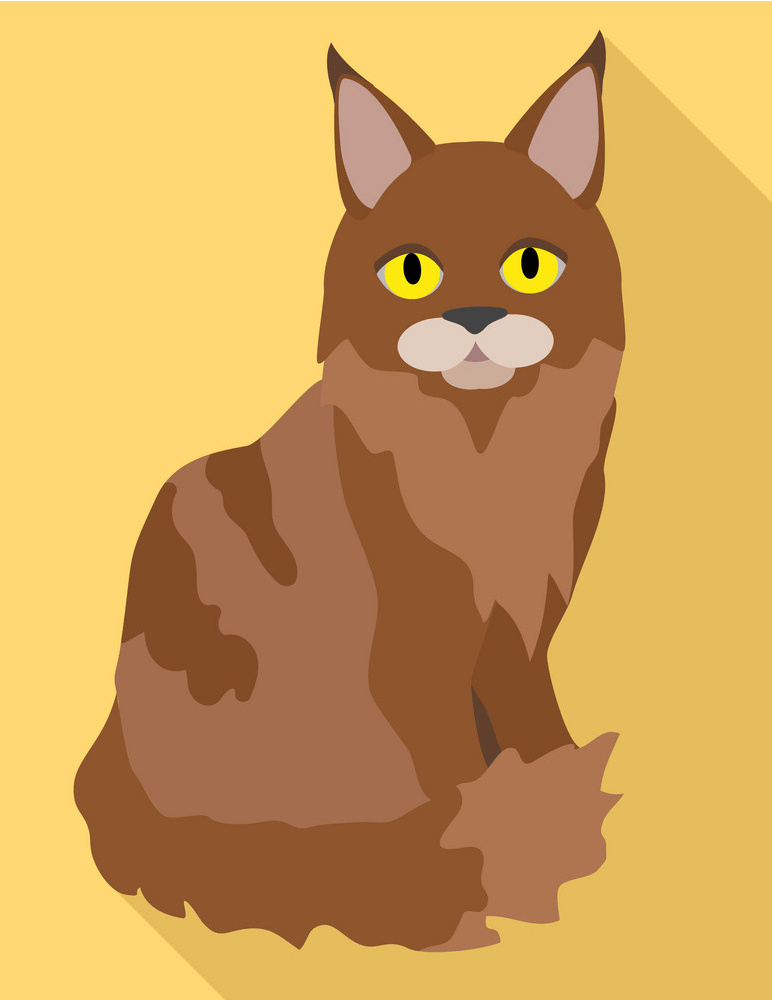 Maine Coon Cat clipart 2