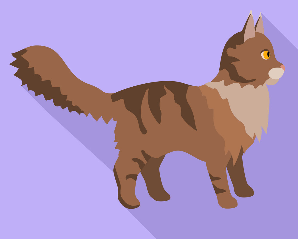 Maine Coon Cat clipart 3