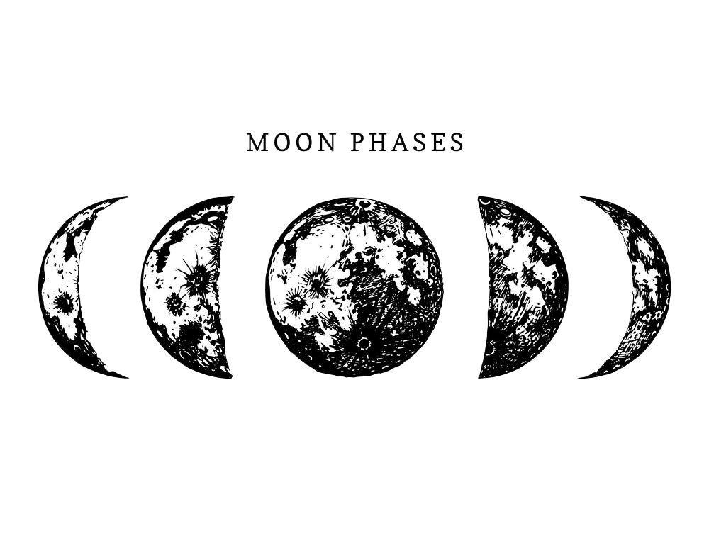 Moon Phases clipart transparent